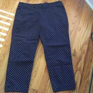 Loft blue and white polkadot pants size 6